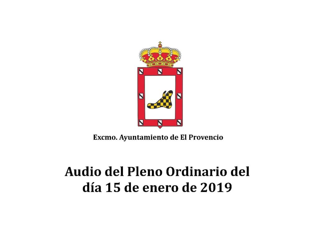 Vídeo y audio del Pleno Ordinario del día 15 de enero de 2019